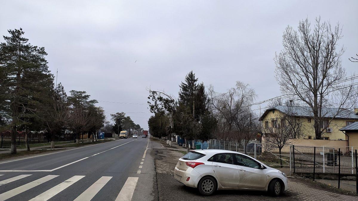 Ion Roata, IL 1